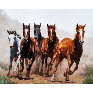 Western Theme Shower Curtains