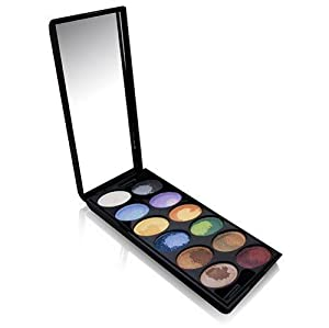 SHANY Professional Multi Effect Velvet Touch Eyeshadow Palette, 24 Color