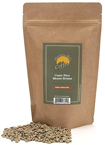 Costa Rican Monte Brisas Green Unroasted Coffee Beans 1 Pound (Whole Bean Coffee Unroasted compare prices)