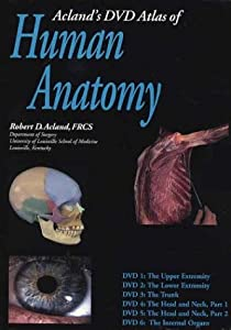 Human Anatomy The Upper Extremity, the Lower Extremity, the Trunk, the Head and Neck, the Head and Neck, and the Internal Organs