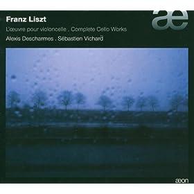 Ferenc Liszt 411QY3IwxrL._SL500_AA280_