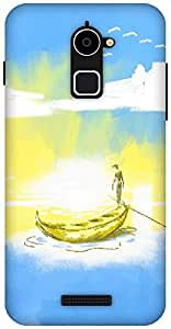 The Racoon Grip Calm Waters hard plastic printed back case / cover for Coolpad Note 3 Lite