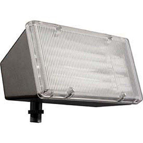 lithonia lighting fp213l 120 m12 13w compact fluorescent flood light. Black Bedroom Furniture Sets. Home Design Ideas