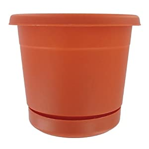 Rolled Rim Planter [Set of 24] Color: Terra Cotta, Size: 20""