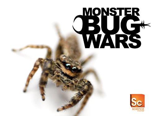 Monster Bug Season 1