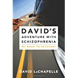 David's Adventure with Schizophrenia: My Road to Recoveryby David LaChapelle