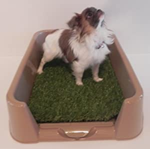 Dog Litter Box By The Rascal Dog Litter Box Company. As Seen On Dragon's Den ....... by RASCAL DOG LITTER BOX COMPANY
