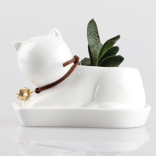 small-cub-cat-ceramic-succulent-plant-flower-pot-flowerpot-planter-nursery-pots-white-porcelain-with