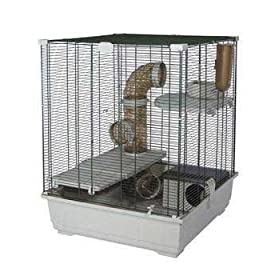 Tom Kit 62Q GP/Rat Cage