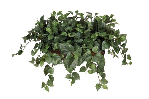 Artificial Pothos Ledge Plant with Long Trailers