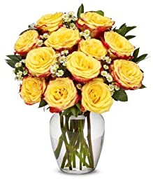 From You Flowers - Two Dozen Festive Yellow Roses with Red Edges (Free Vase Included)