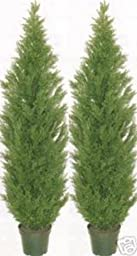 Two 5 Foot Artificial Topiary Cedar Trees Potted Indoor Outdoor Plants