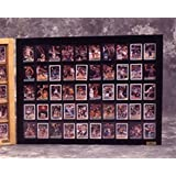 50 Baseball card displays case will hold 50 ungraded baseball cards P306B