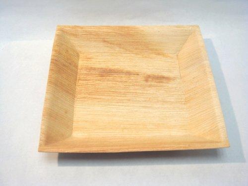 25 assiettes palmier carrées design biodegradables, 18x18cm