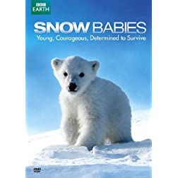 Snow Babies / Polar Bear: Spy on the Ice