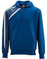 Puma Spirit Teamwear Junior Sweat Hoody
