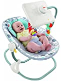 Fisher-Price Ipad Apptivity Seat, Newborn-to-Toddler (Discontinued by Manufacturer)