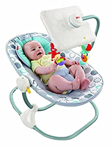 Fisher-Price Ipad Apptivity Seat, Newborn-to-Toddler