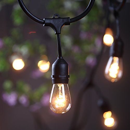 Outdoor Commercial String Globe Lights 24 Feet Long with 12 Hanging Dropped Sockets- 12 S14 ...