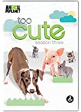 Too Cute Season 3 [Import]