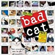Bad Cat Wall Calendar 2009