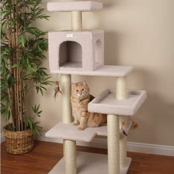 Great Cat Furniture for Cats with images