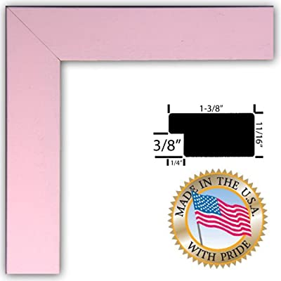 10x20 / 10 x 20 Baby Pink Stain on Beech Custom Picture Frame - Brand NEW .. 1.375'' wide