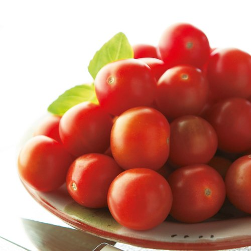 suttons-seeds-182142-tomato-gardeners-delight-seed