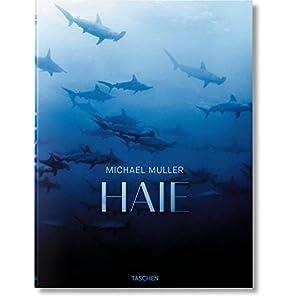 Michael Muller. Haie. Auge in Auge mit den gefährdeten Räubern der Meere