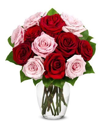 From You Flowers - One Dozen Roses in Red + Pink (…