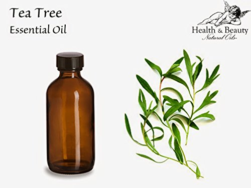 100% Tea Tree Essential Oil 16 Ounces In Amber Glass 100% Pure Essential Oil High Quality