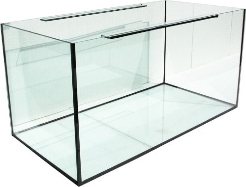 AAQ043-Aquarium-rechteckig-AptiGlass-100x50x50-cm-250L-bei-Robizoo