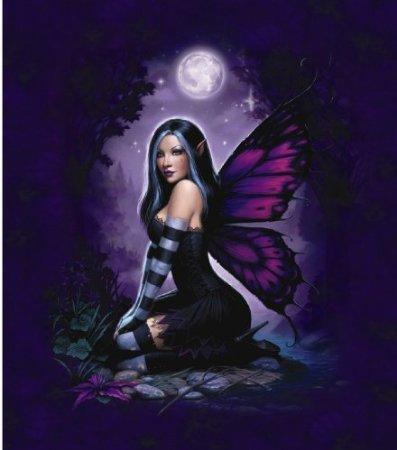 """Night Fairy Queen Sizesuper Soft Plush Mink Blanket 79""""X95"""" front-340815"""