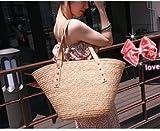 大人籠バッグ【カラーはベージュ】カゴBAG バッグ 籠 かごばっぐ カゴバッグ LH-vav