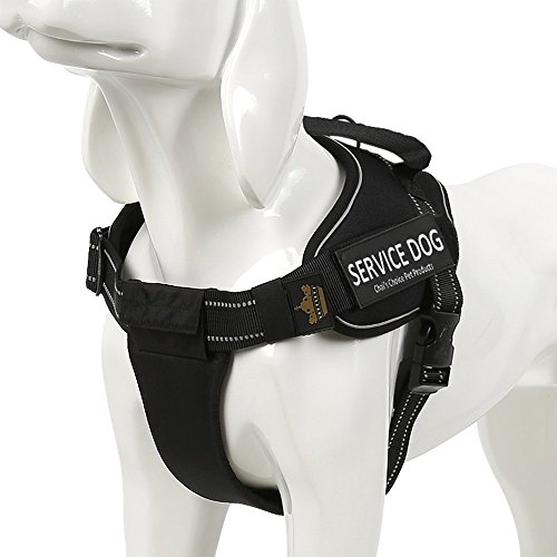 Service Dog Vest Harness - Chai's Choice Best