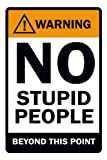 Posterboy 'Warning - No Stupid People' Poster