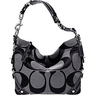 Coach Signature Carly Sac Shoulder Hobo Handbag Bag 40