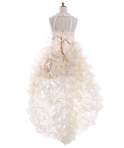 Fashion Plaza Girl's Satin Organza Hi-lo Formal Communion Pageant Dress K0025 (8, Champagne)