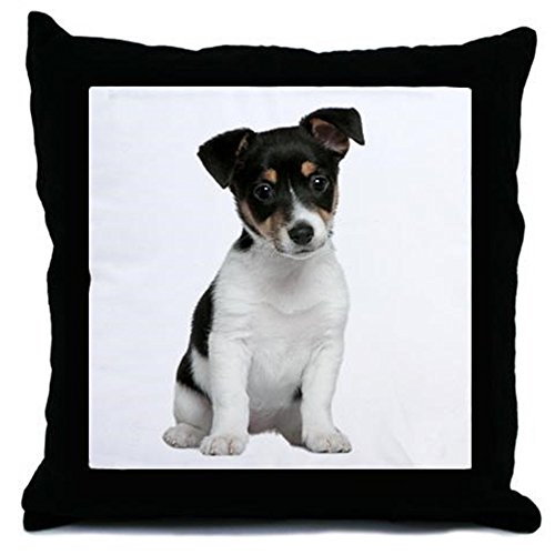 CafePress-Jack Russell Terrier-Throw Pillow, cuscino decorativo Accent,