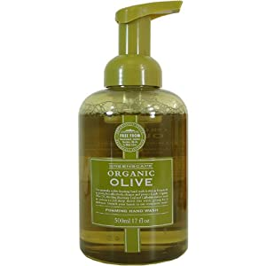 Olive Oil Greenscape Somerset Organic Foaming Hand Wash 17 fl oz Pump