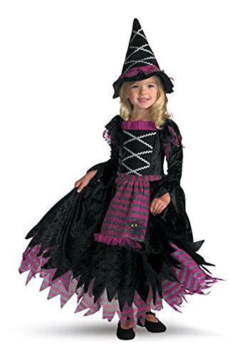 Girls - Fairy Tale Witch 4 To 6 Child Halloween Costume - Child 4-6