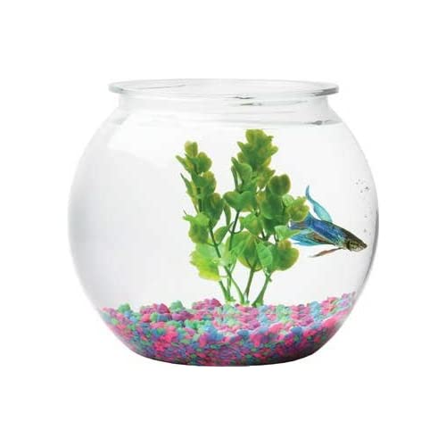 5 Gallon Round Fish Tank Aqua 8 Gallon Round Aquarium
