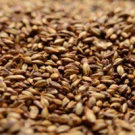 Baird Roasted Barley Crushed Malt - 1 lb. Bag (Roasting Barley compare prices)