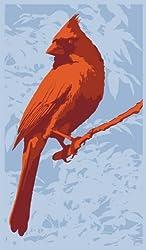 Wellspring WELL3287 Screen Cleaner Cardinal