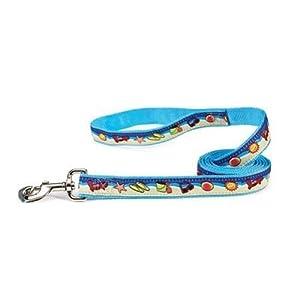 East Side Collection Nylon Seaside Ribbon Dog Lead, Sand/Surf, 6-Feet