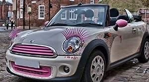 cils voiture rose les cils pour les voitures les. Black Bedroom Furniture Sets. Home Design Ideas