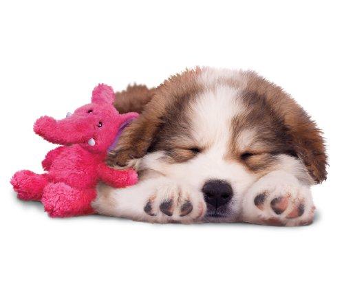 Kong Cozies Dog Squeaky Toy Dog Supplies Warning Save