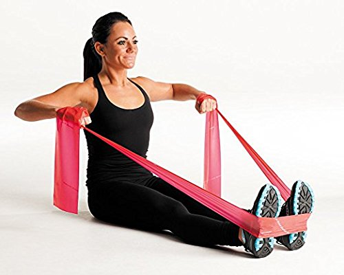 JoyFit - Pro Series Exercise Stretch Resistance Bands For Rehabilitation, Portable Fitness And Workout, Home Exercise