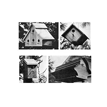 bird house plans amazon