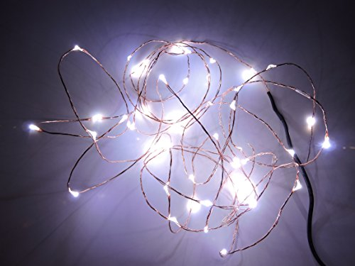 Aspentek 12V 5M 50 Led Fair String Light On Ultra Thin Copper Wire String With Dc Female Connector And 12V Dc/Ac Power Adapter (White)